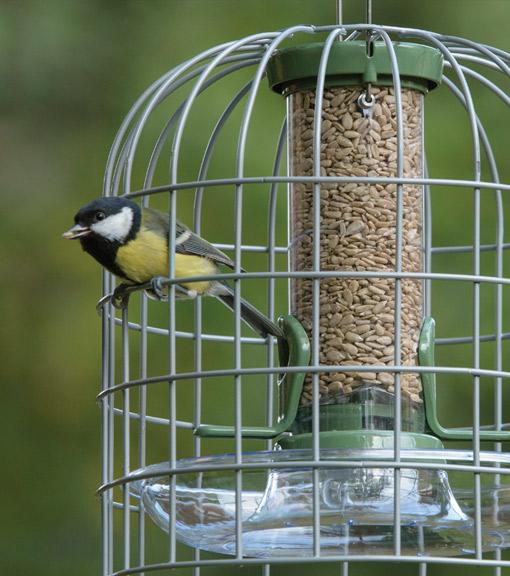 bird feeders wild bird feeders garden feeders rspb shop. Black Bedroom Furniture Sets. Home Design Ideas