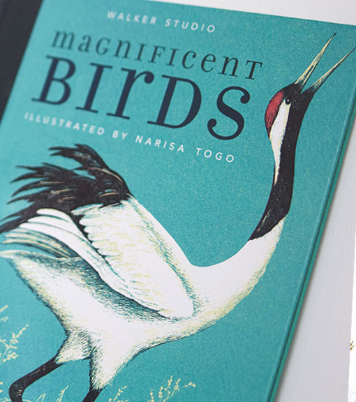 Bird books available to buy from the RSPB