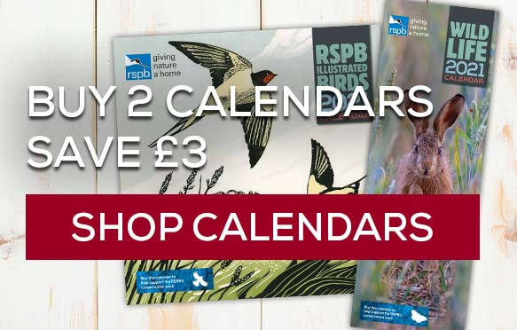 Buy any 2 square or slimline calendars and save £3. Shop calendars