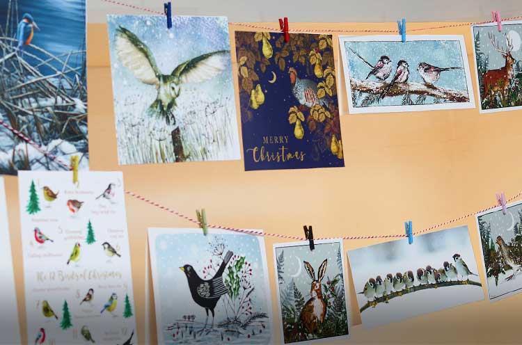 Christmas cards lifestyle shot featuring RSPB charity christmas cards selection