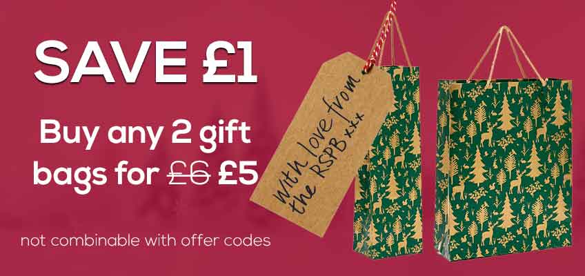 Save £1 when you buy any 2 gift bags before 2 January 2019