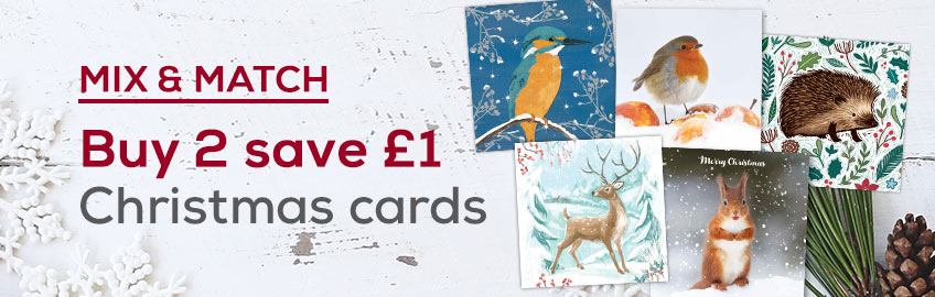 Buy 2 charity Christmas cards and save £1