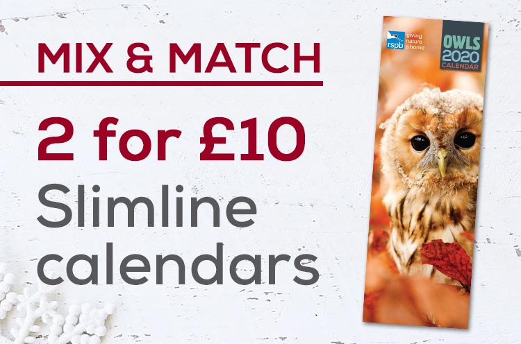 2 for £10 on slimline calendars