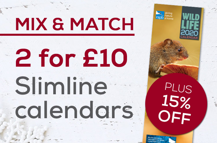 2 for £10 on slimline calendars plus 15% off for a limited time