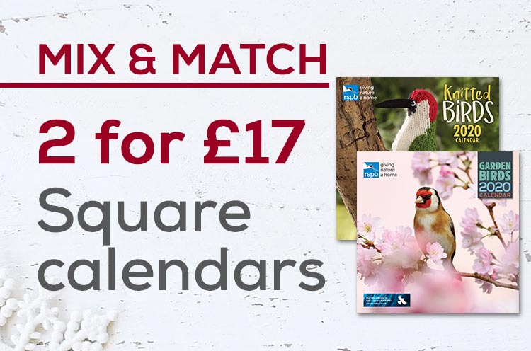 Buy 2 square calendars for £17