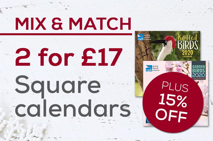 Buy 2 square calendars for £17 plus save 15% off