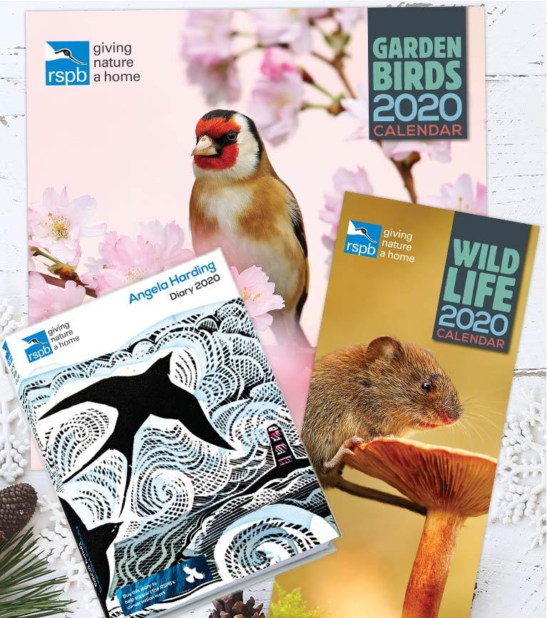 Christmas calendars and diaries lifestyle shot featuring RSPB Garden bird 2020 calendar, RSPB Wildlife 2020 calendar and Angela Harding diary