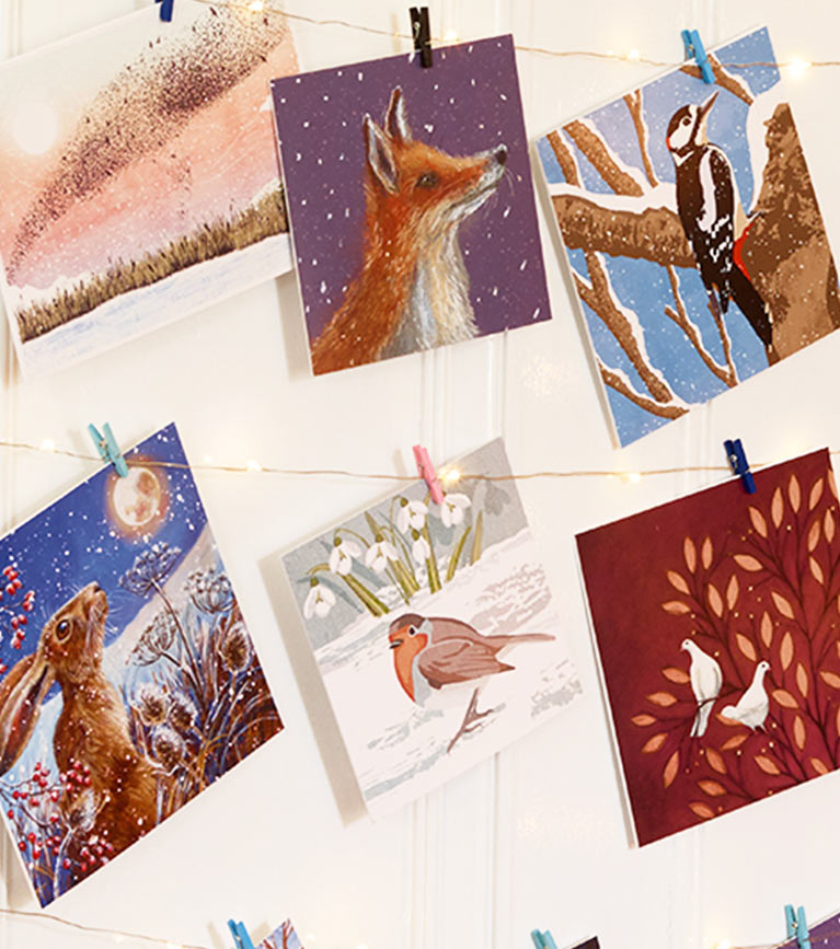Christmas cards lifestyle shot featuring RSPB christmas cards range selection