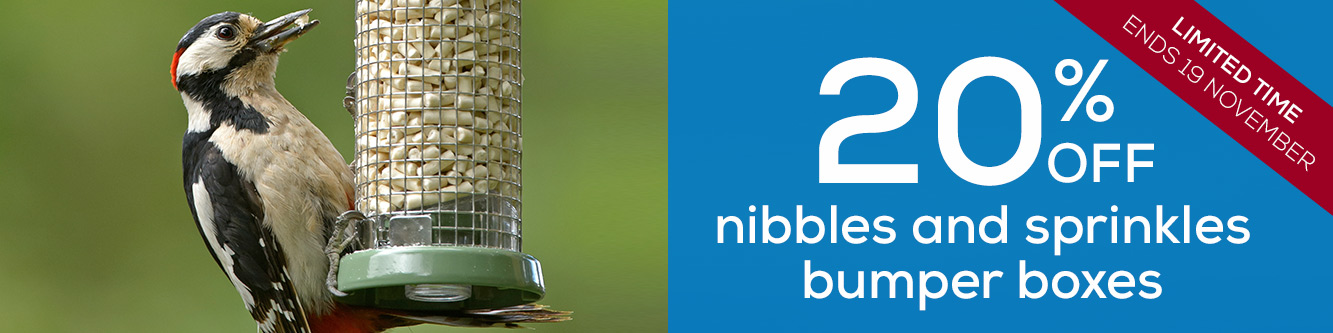 20% off nibbles and sprinkles bumper boxes