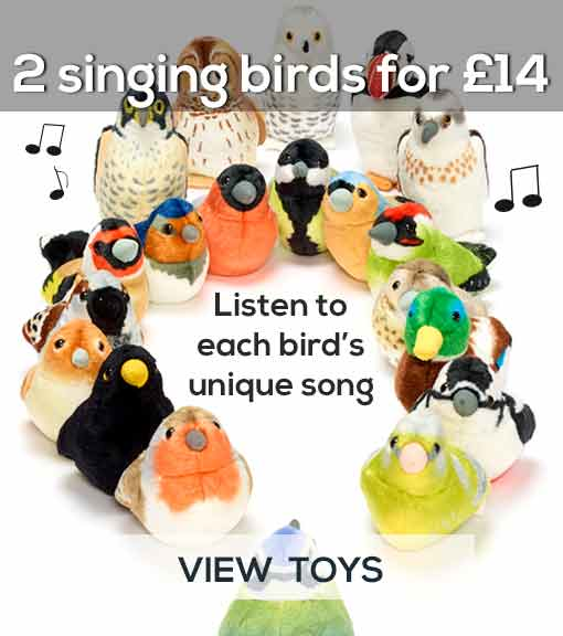 Buy two soft toy singing birds for 14 pounds, saving 2 pounds - view toys