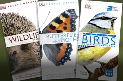 Wildlife, bird and butterfly moth pocket guidebooks