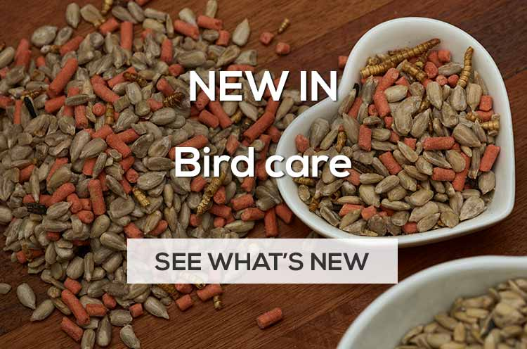 New in bird care and wild bird food for 2020