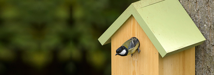 RSPB Garden Bird Nest Boxes