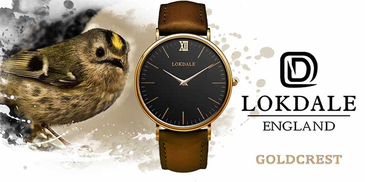 Goldcrest watch - RSPB and Lokdale