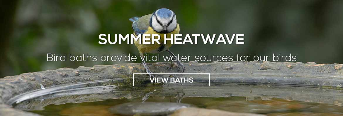 Summer heatwave - birds need water which you can provide with a bird bath