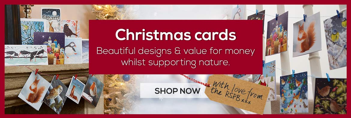 Christmas cards range from RSPB Shop with designs for everyone including illustrated, photographic, wildlife, birds and fun Christmas cards at good prices.