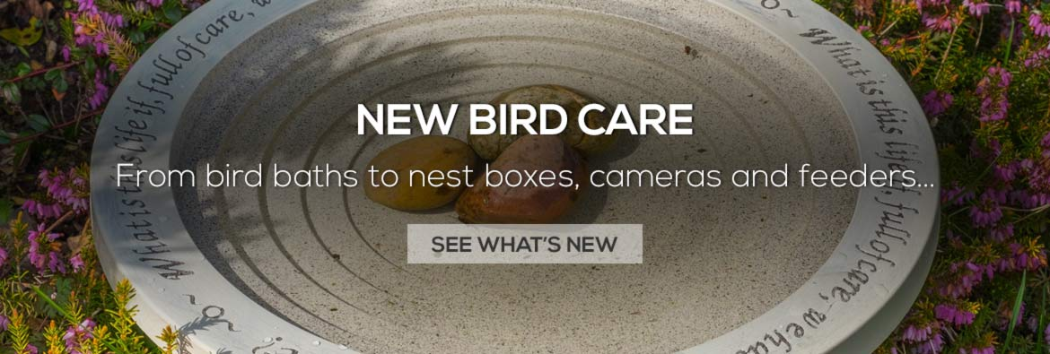 New in bird care - explore new range of feeders, bird baths, nest boxes and more
