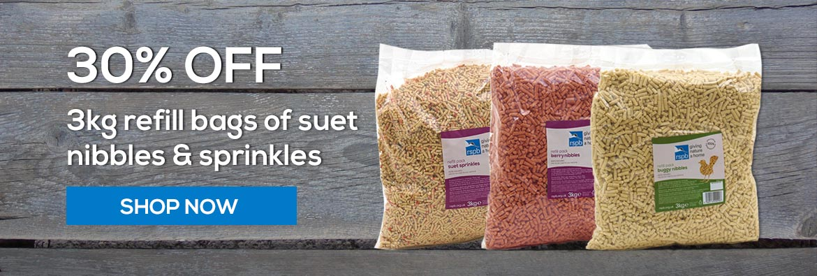 Save 30 percent on our 3kg refill bags of suet pellets including bestselling buggy nibbles and new berry nibbles