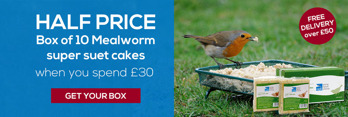 Half price box of 10 mealworm fat cakes for birds when you spend 30 pounds