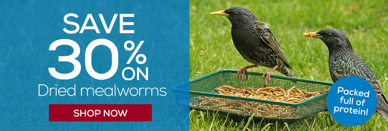 30% off Dried mealworms - 7th - 22nd May