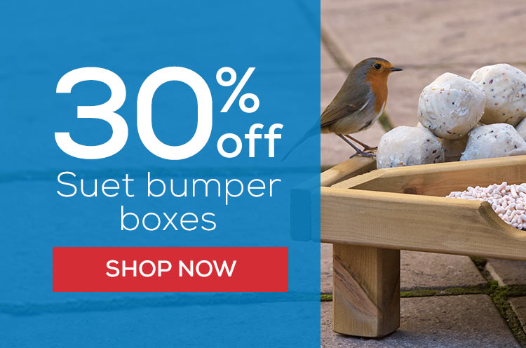 30% off suet bumper boxes