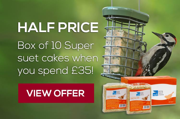 Half price box of 10 super suet cakes sunflower hearts variety when you spend £35 - view offer