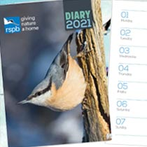 See inside our 2021 wall calendars, diaries and organisers