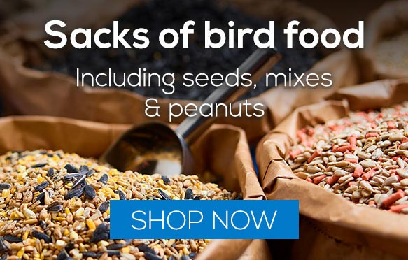 Shop Bird Food sacks including bird seed, mixes and peanuts.