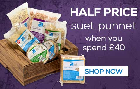 Half price super suet punnet when you spend £40 - save £9 - shop now