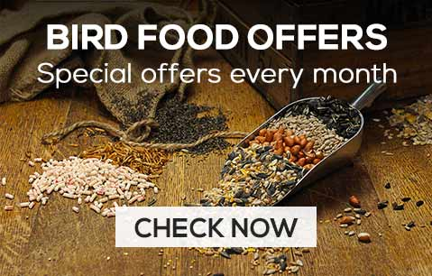 Bird food offers - special offers every month - check now