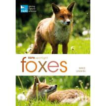 RSPB Spotlight foxes product photo
