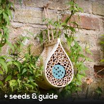 Dewdrop bee biome with seeds and guide product photo