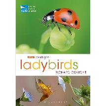 RSPB Spotlight ladybirds product photo