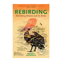 Rebirding - Rewilding Britain and its Birds by B Macdonald (Paperback) product photo