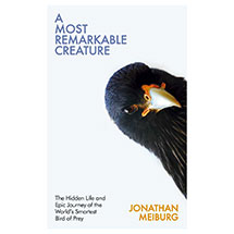 A Most Remarkable Creature: The Hidden Life and Epic Journey of the World's Smartest Bird of Prey product photo