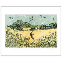 Bayfield Swallow greetings card product photo