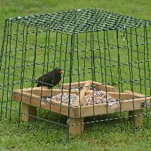 Ground feeding sanctuary wide mesh product photo
