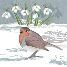 Bobbing along RSPB charity Christmas cards - 10 pack product photo