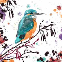 Christmas kingfisher RSPB charity Christmas cards - 10 pack product photo