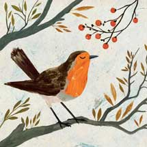 Christmas robin RSPB charity Christmas cards - 10 pack product photo