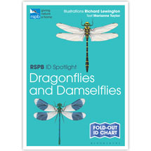Dragonflies and damselflies identifier chart - RSPB ID Spotlight series product photo
