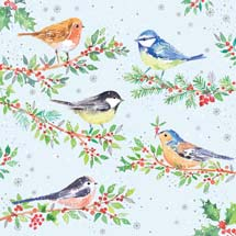 Festive birds RSPB charity Christmas cards - 10 pack product photo