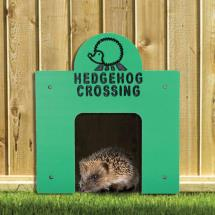 Hedgehog crossing product photo