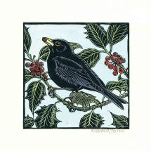 Hiding in the holly RSPB charity Christmas cards - 10 pack product photo