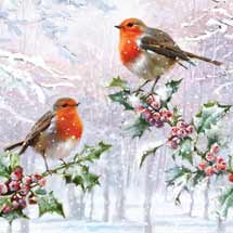Holly robins RSPB charity Christmas cards - 10 pack product photo