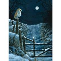 Moonlit path RSPB charity Christmas cards - 10 pack product photo