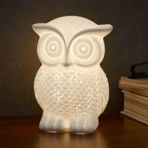 Owl night light product photo