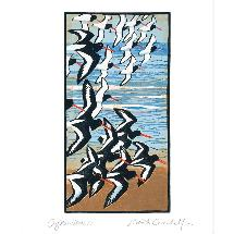 Oystercatchers by Robert Greenhalf greetings card product photo