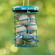 RSPB Premium suet bird feeder product photo