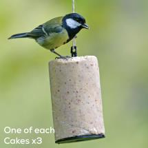 Super suet hanging cakes x3 (one of each variety) product photo